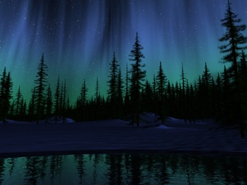(z) aurora over coniferous forest
